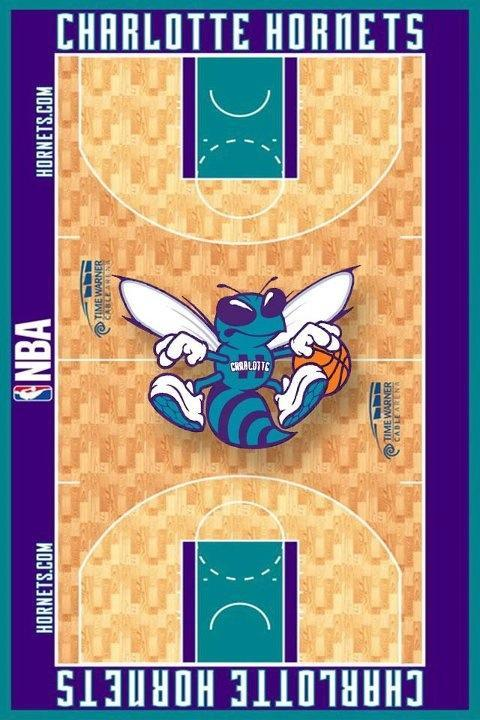 Possible Charlotte Hornets 2013-2014 Uniforms, Logo, and Court (6/6)