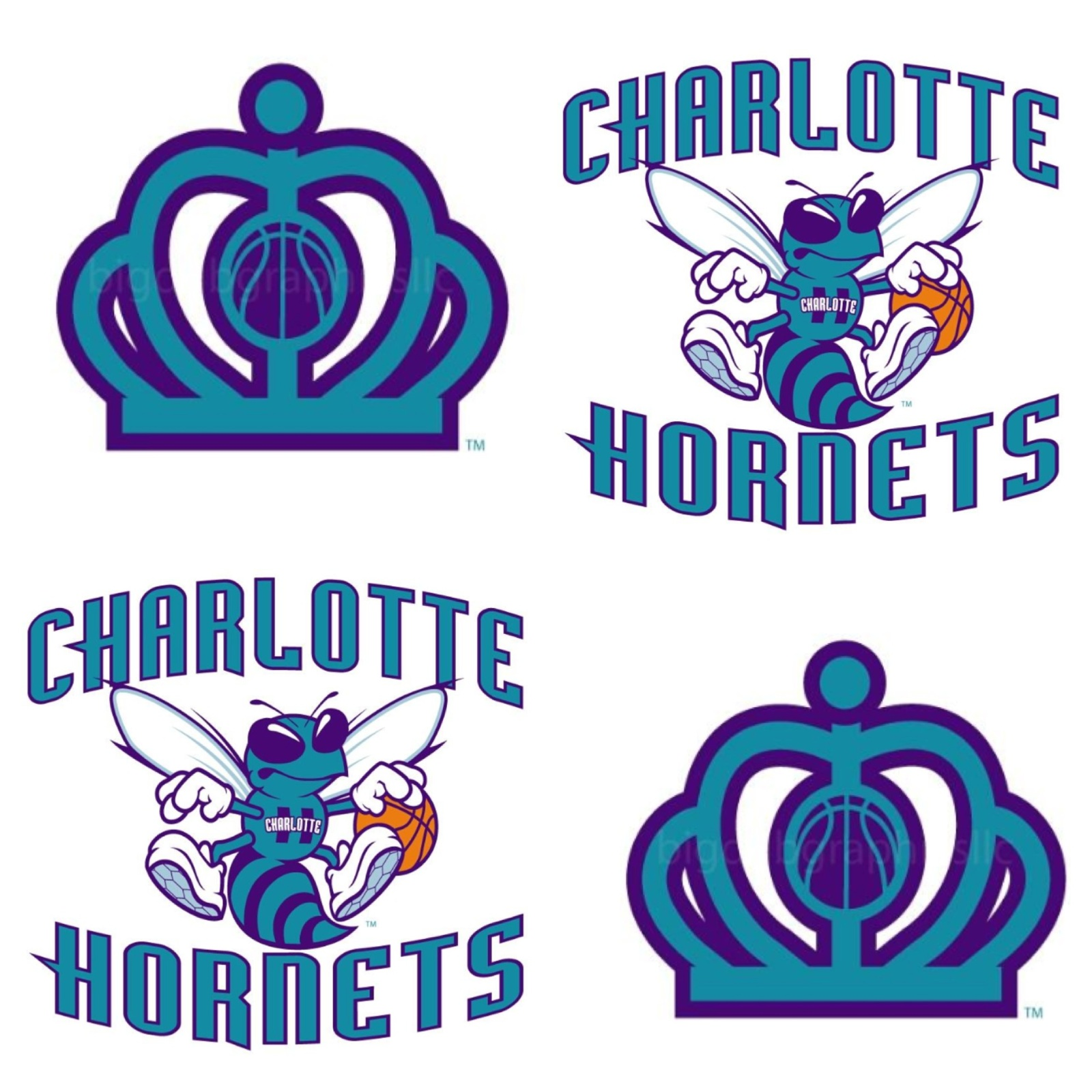 New Charlotte Hornets Logo With Font Secondary