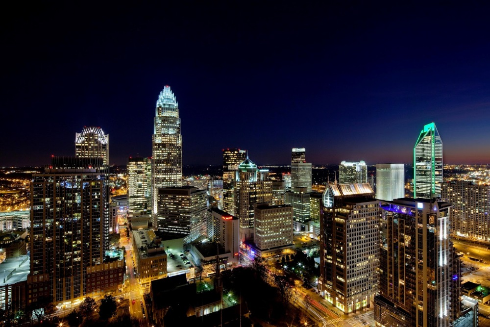 Dear Charlotte, From Bring Back the Buzz