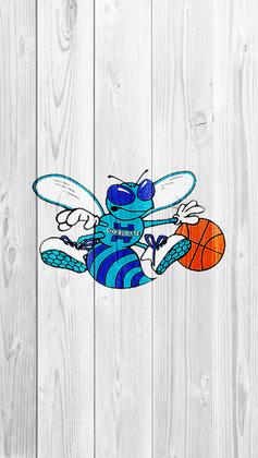 Charlotte Hornets Wallpapers/Desktops (4/6)