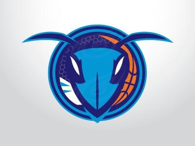 POLL: Which Charlotte Hornets Logo? (3/6)