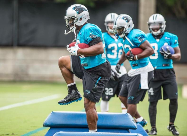 Jonathan Stewart leads the running back unit through agility drills. What became a position of worry last season, is one of this year's deepest groups. Photo courtesy of Panthers.com (Melissa Melvin-Rodriguez)