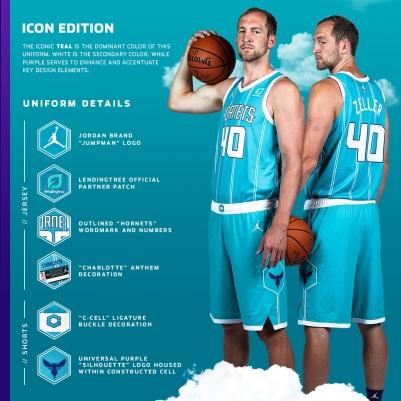 Icon Infographic